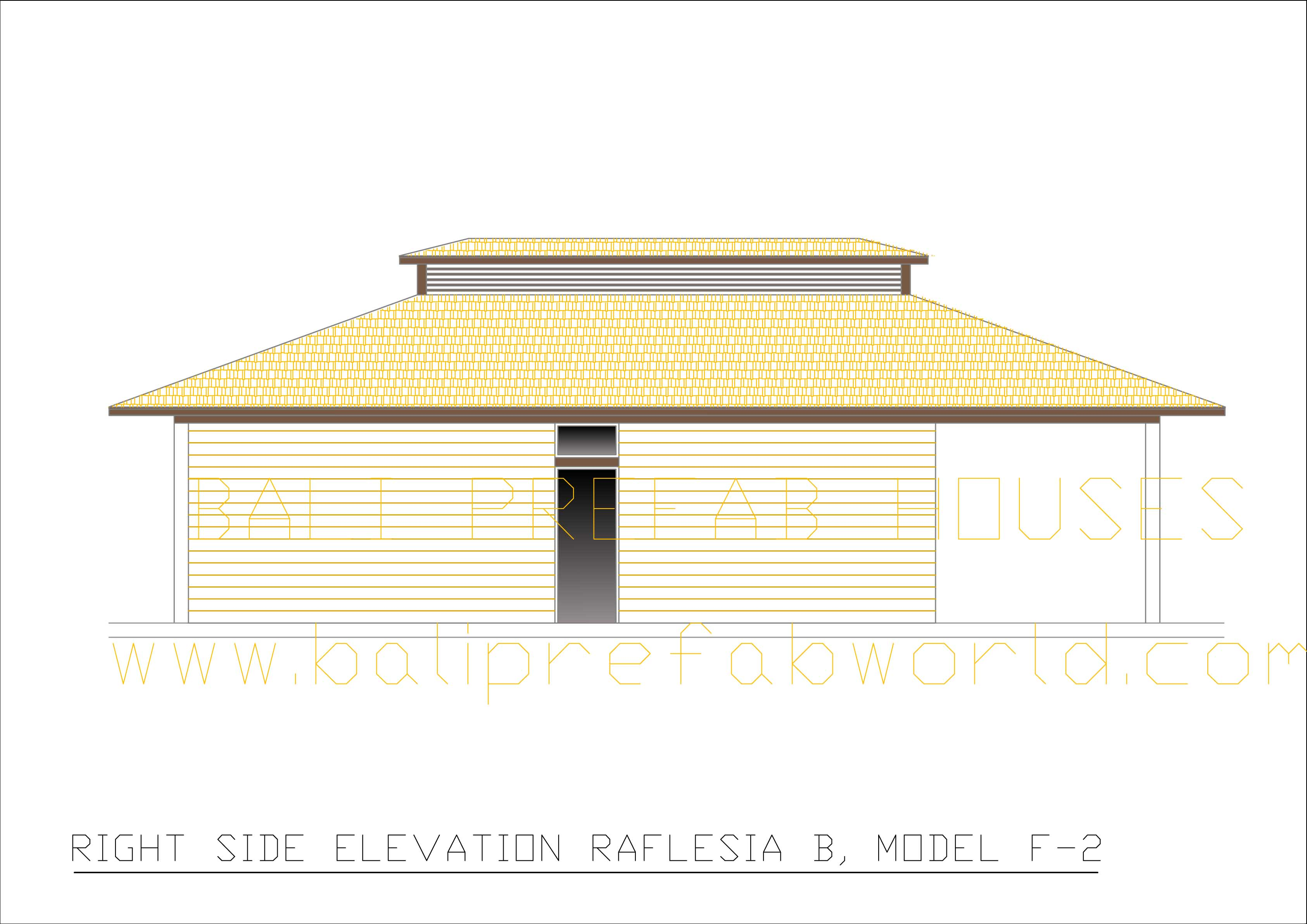 Raflesia-B right side elevation