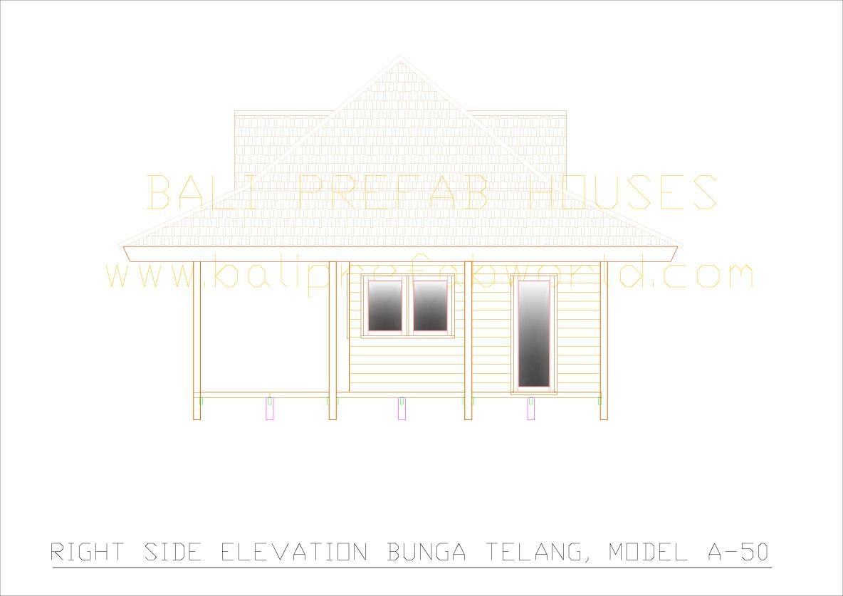 Bunga-telang right side elevation