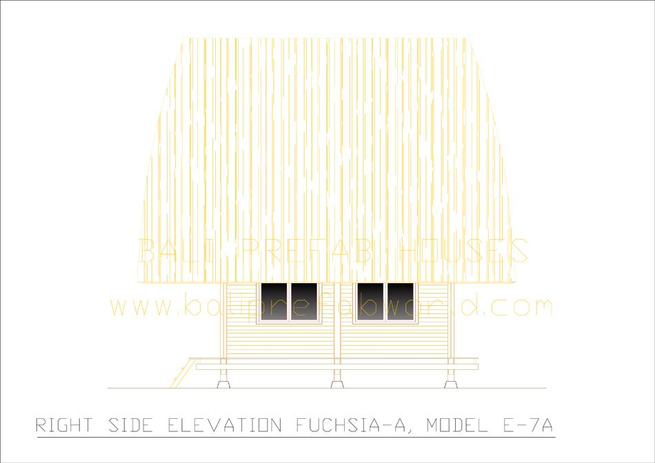 Fuchsia-A right side elevation