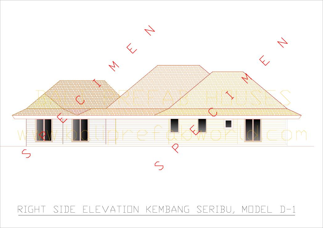 Kembang seribu right side elevation