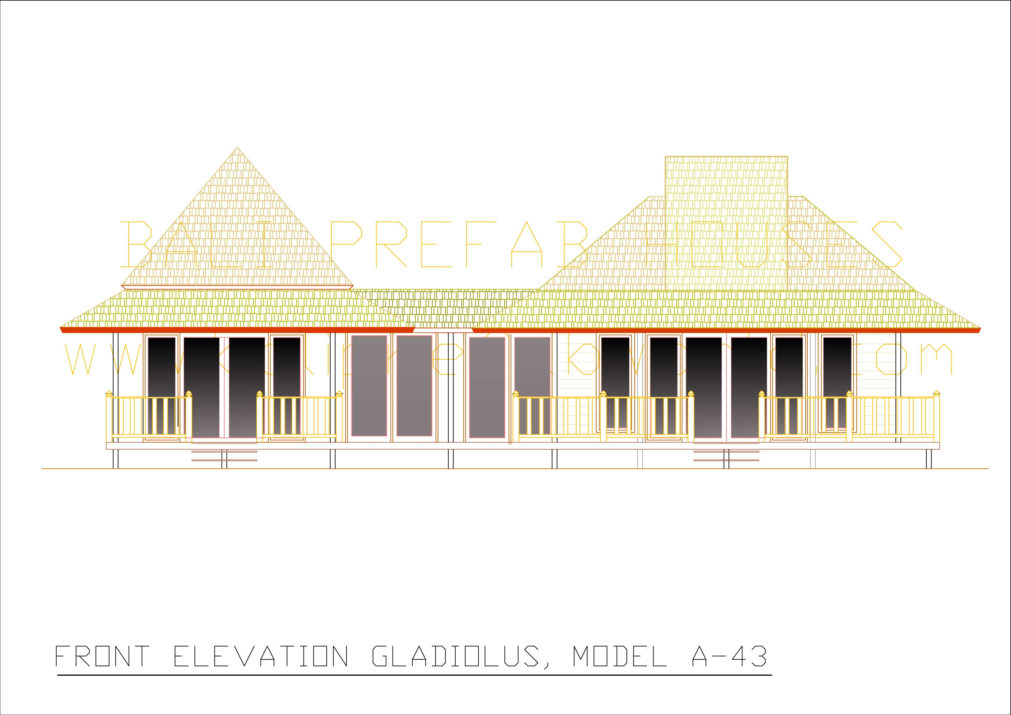 Gladiolus front elevation
