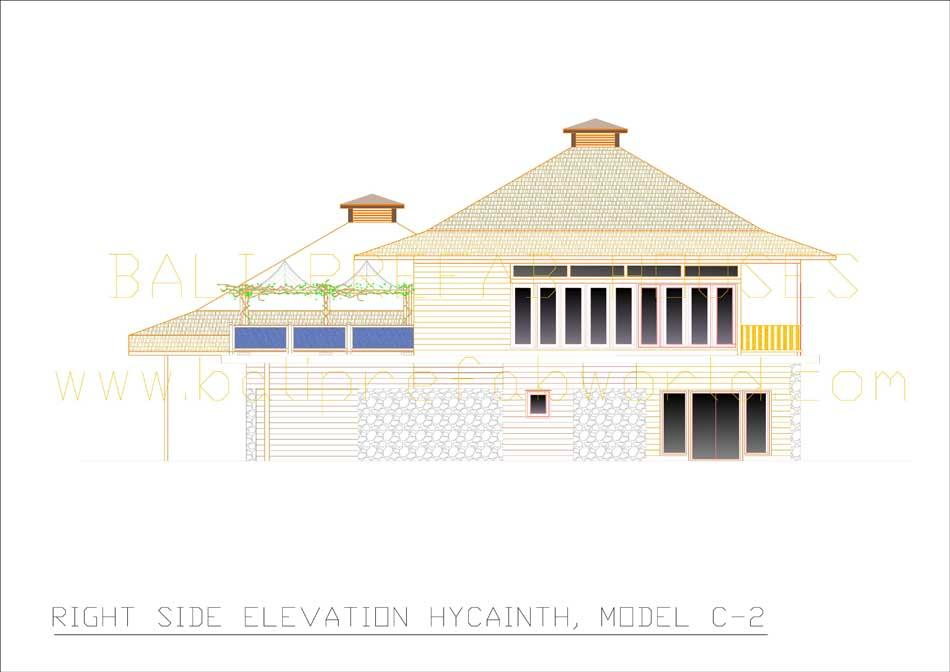 Hyacinth right side elevation